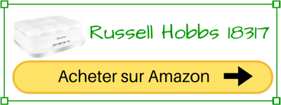 acheter russell hobbs 18317-56 pas cher