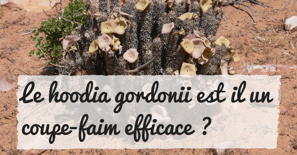 Le hoodia gordonii est il un coupe faim efficace - Coupe faim puissant redasan ...