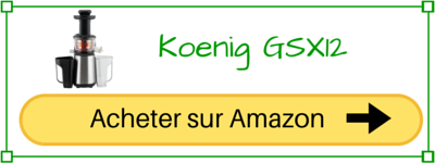 Koenig GSX12 pas cher